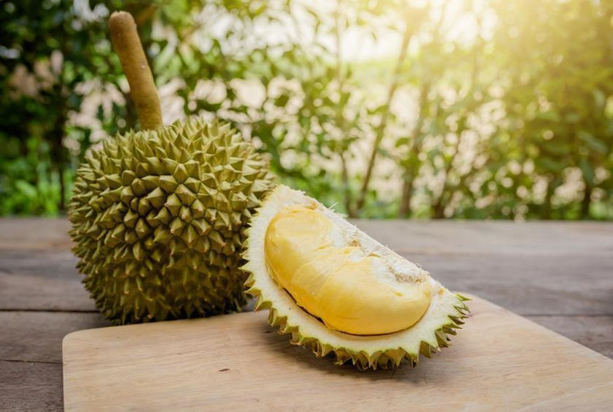 Nutritional benefits of durian